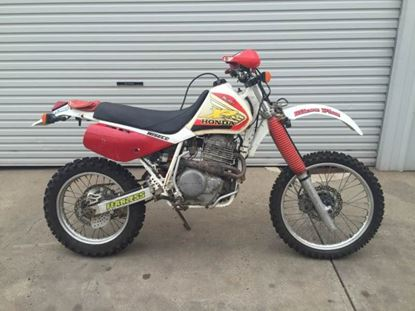 Picture of XR600 1993
